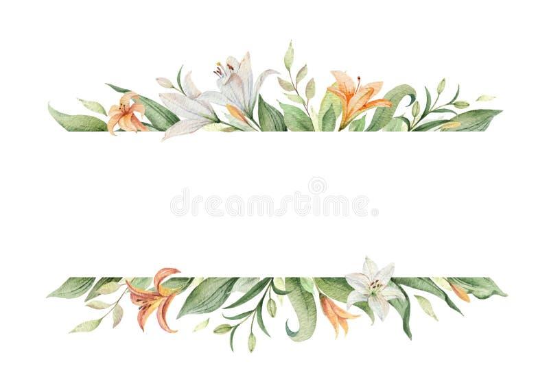水彩橙色百合花和绿色叶子传染媒介横幅  库存例证