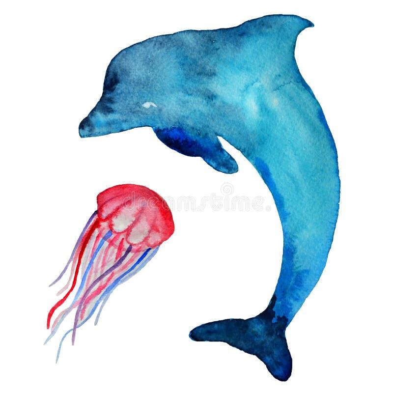 水彩海豚和海居民,隔绝在白色背景 库存例证