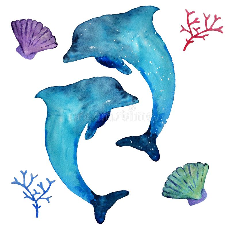 水彩海豚和海居民,隔绝在白色背景 向量例证
