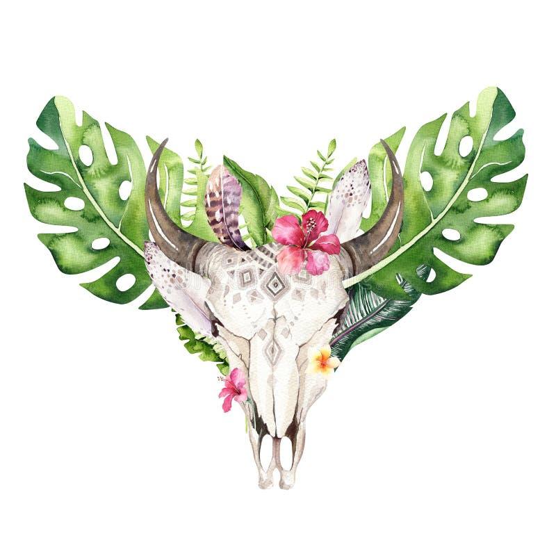 水彩漂泊母牛头骨和回归线棕榈叶 西部鹿哺乳动物 热带鹿boho装饰印刷品鹿角 花, 皇族释放例证