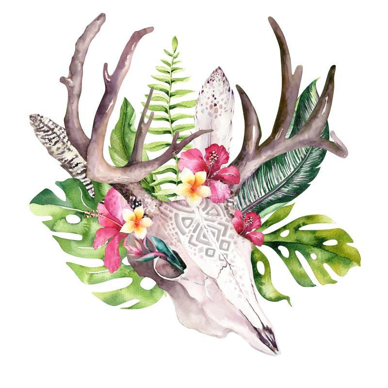 水彩漂泊母牛头骨和回归线棕榈叶 西部鹿哺乳动物 热带鹿boho装饰印刷品鹿角 皇族释放例证