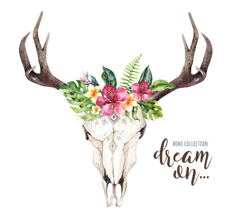 水彩漂泊母牛头骨和回归线棕榈叶 西部鹿哺乳动物 热带鹿boho装饰印刷品鹿角 向量例证