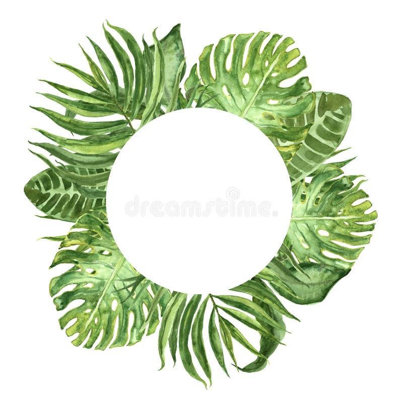 水彩热带叶子框架 手画异乎寻常的夏天植物和叶子在白色背景卡片的 库存例证