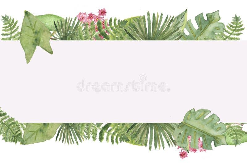 水彩热带叶子横幅