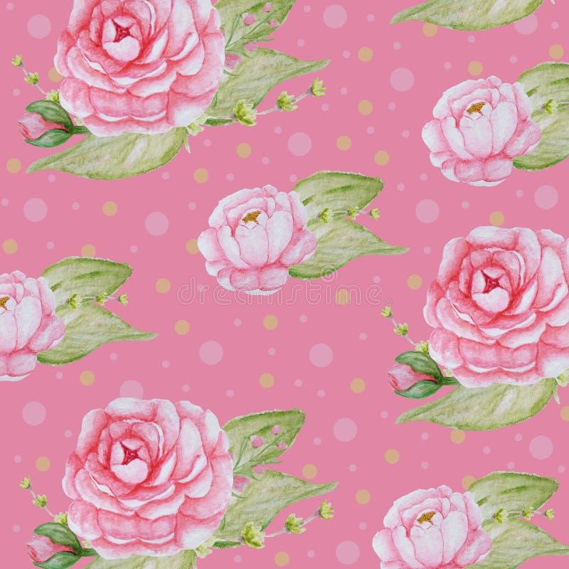 水彩牡丹花纹花样,桃红色牡丹纹理,在桃红色背景的浪漫剪贴薄纸 向量例证