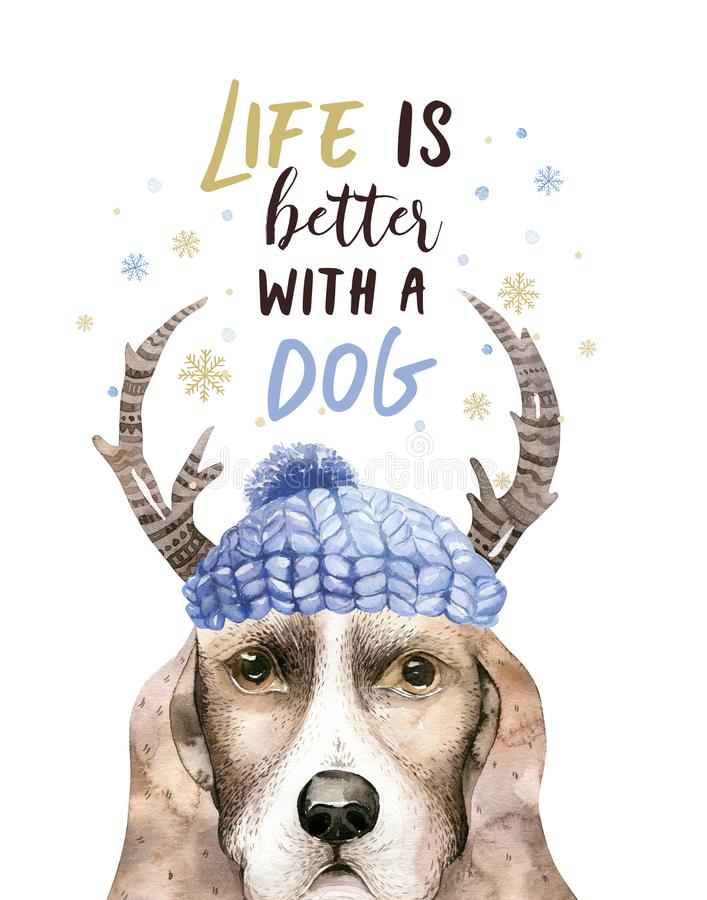 水彩特写镜头逗人喜爱的狗圣诞快乐画象  背景查出的白色 手拉的美好的家庭新年 库存例证