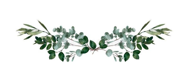 水彩现代装饰元素 玉树圆的绿色叶子花圈,绿叶分支,诗歌选,边界,框架,典雅 皇族释放例证