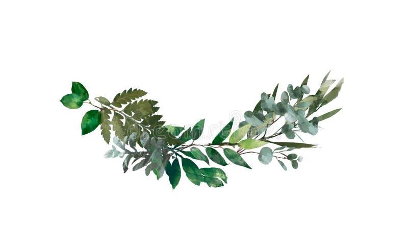 水彩现代装饰元素 玉树圆的绿色叶子花圈,绿叶分支,诗歌选,边界,框架,典雅 库存例证