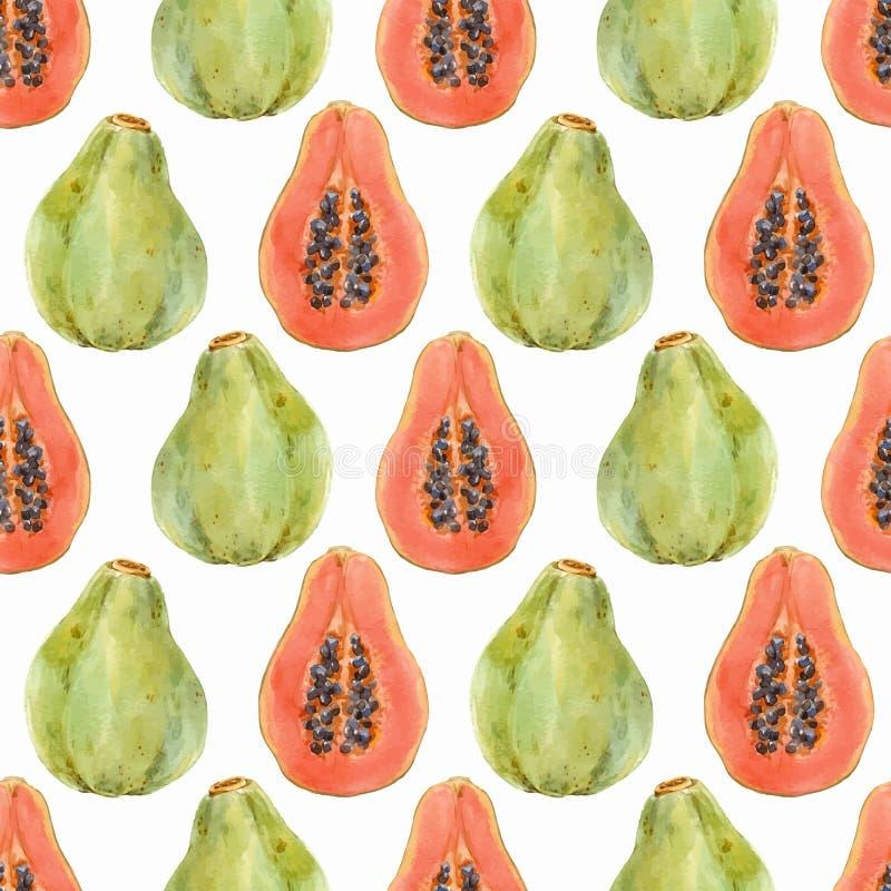 水彩番木瓜传染媒介样式 库存例证