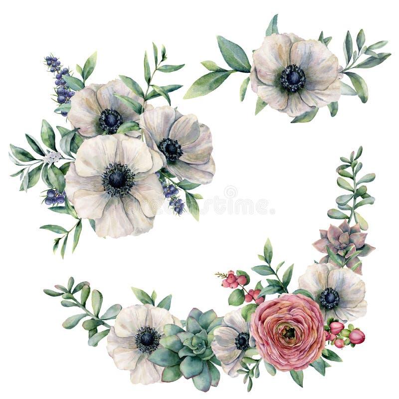 水彩白色银莲花属、多汁植物和毛茛属花束集合 手画花、玉树叶子和莓果 库存例证