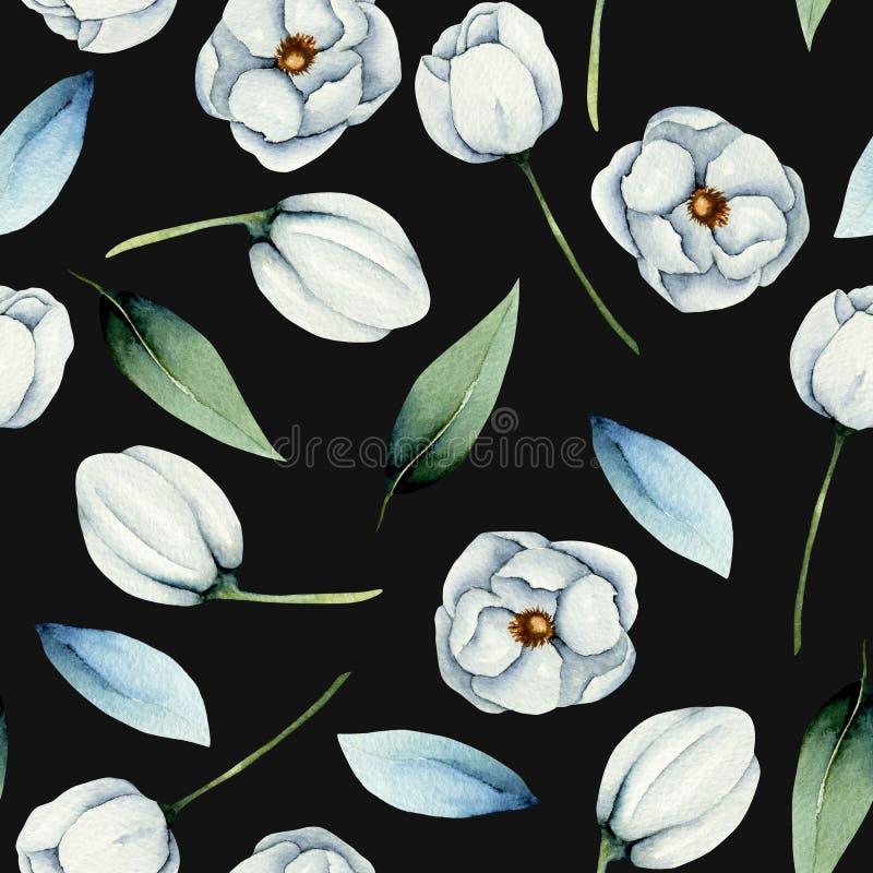 水彩白色银莲花属花无缝的样式 向量例证