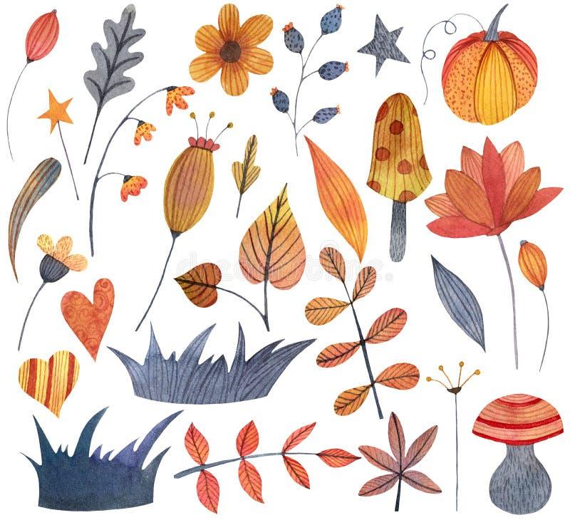 水彩秋天万圣节设置了与花,叶子,草,蘑菇,南瓜的元素 向量例证