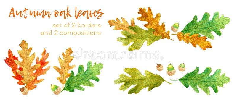 水彩秋天橡木叶子和橡子集合 库存例证