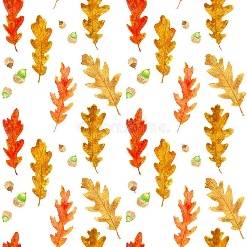 水彩秋天橡木离开无缝的样式 向量例证