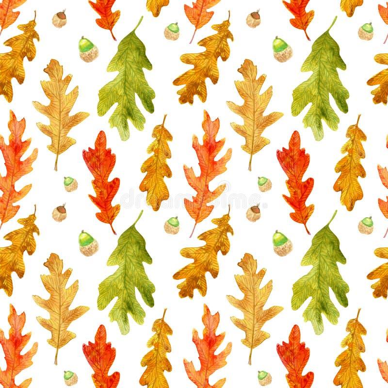 水彩秋天橡木离开无缝的样式 库存例证