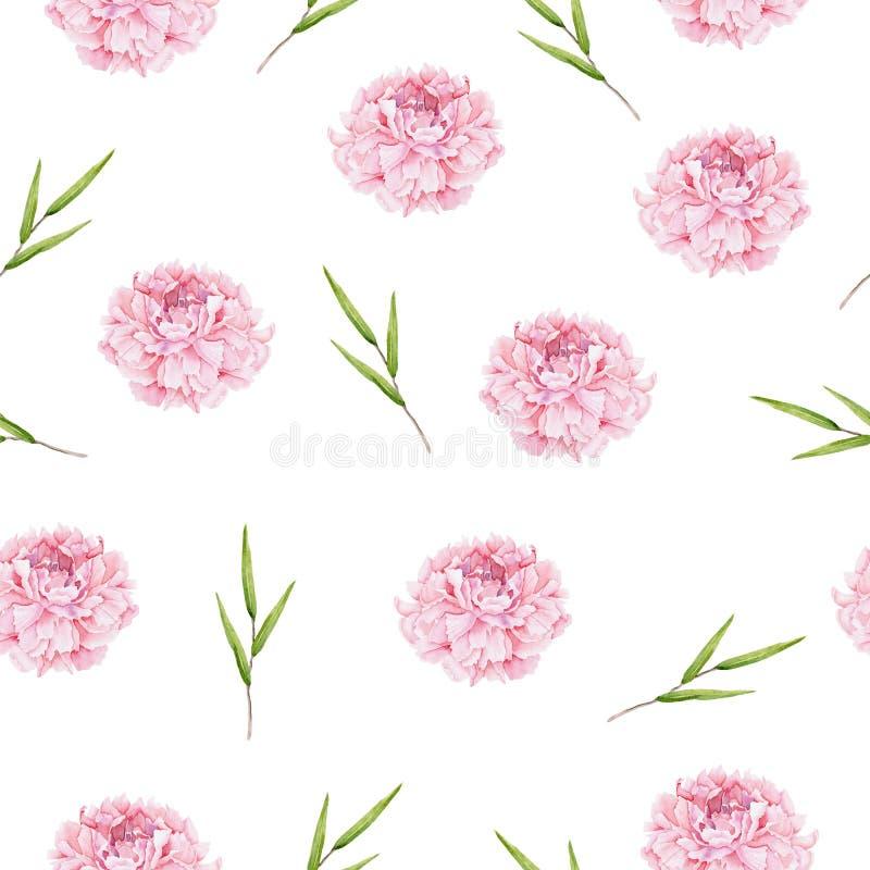 水彩粉牡丹、绿色蝶的无缝图案 白色的孤手绘花叶 库存例证