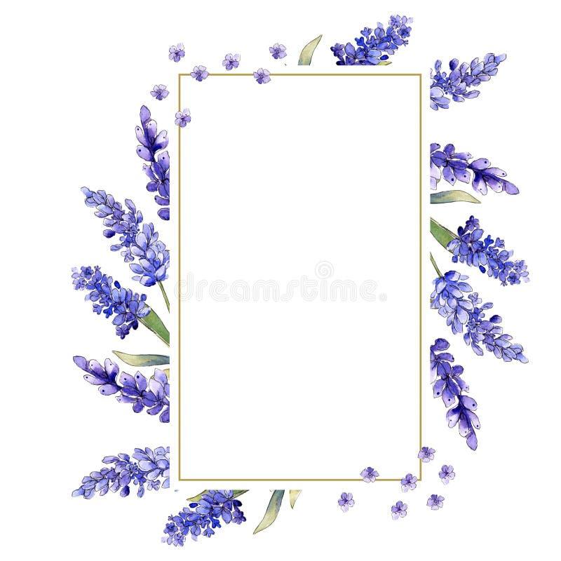 水彩紫色淡紫色花 花卉植物的花 框架边界装饰品正方形 皇族释放例证