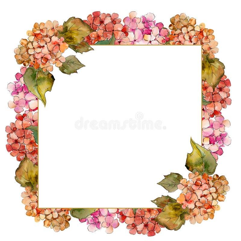 水彩红色和黄色gortenzia花 花卉植物的花 框架边界装饰品正方形 库存例证