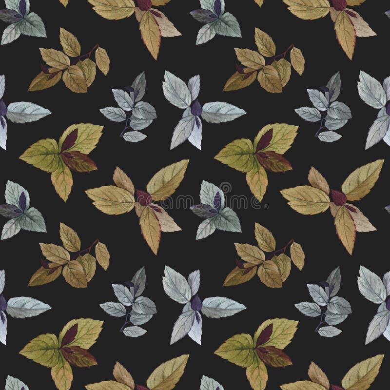水彩绘了叶子 艺术设计的典雅的叶子 库存例证
