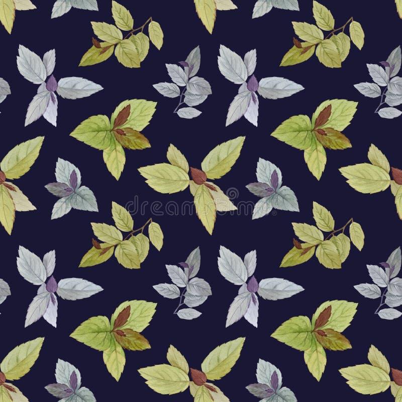 水彩绘了叶子 艺术设计的典雅的叶子 向量例证