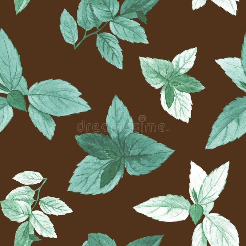 水彩绘了叶子 艺术设计的典雅的叶子 皇族释放例证