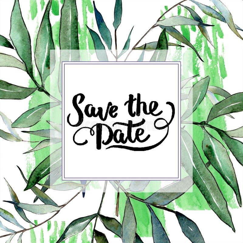 水彩绿色杨柳分支 叶子植物植物园花卉叶子 框架边界装饰品正方形 皇族释放例证