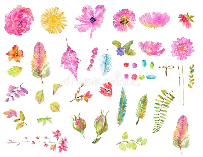 水彩美好的花卉设计集合 库存例证