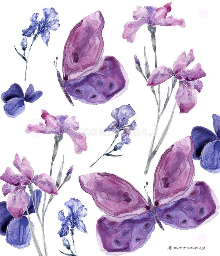 水彩花卉虹膜和蝴蝶在白色背景700 dpi相似的例证叶子geen颜色 皇族释放例证