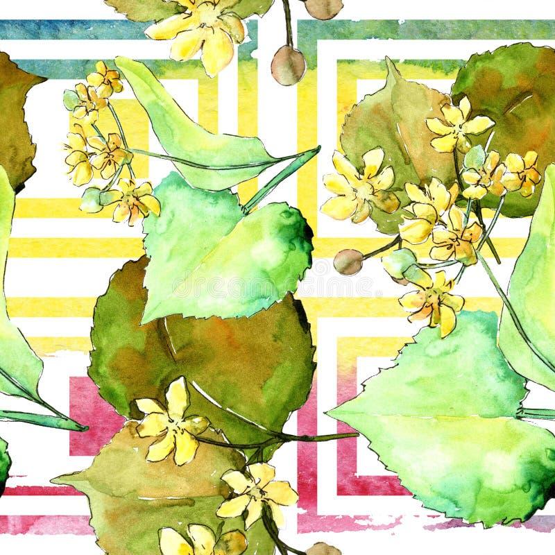 水彩菩提树绿色叶子 叶子植物植物园花卉叶子 无缝的背景模式 向量例证