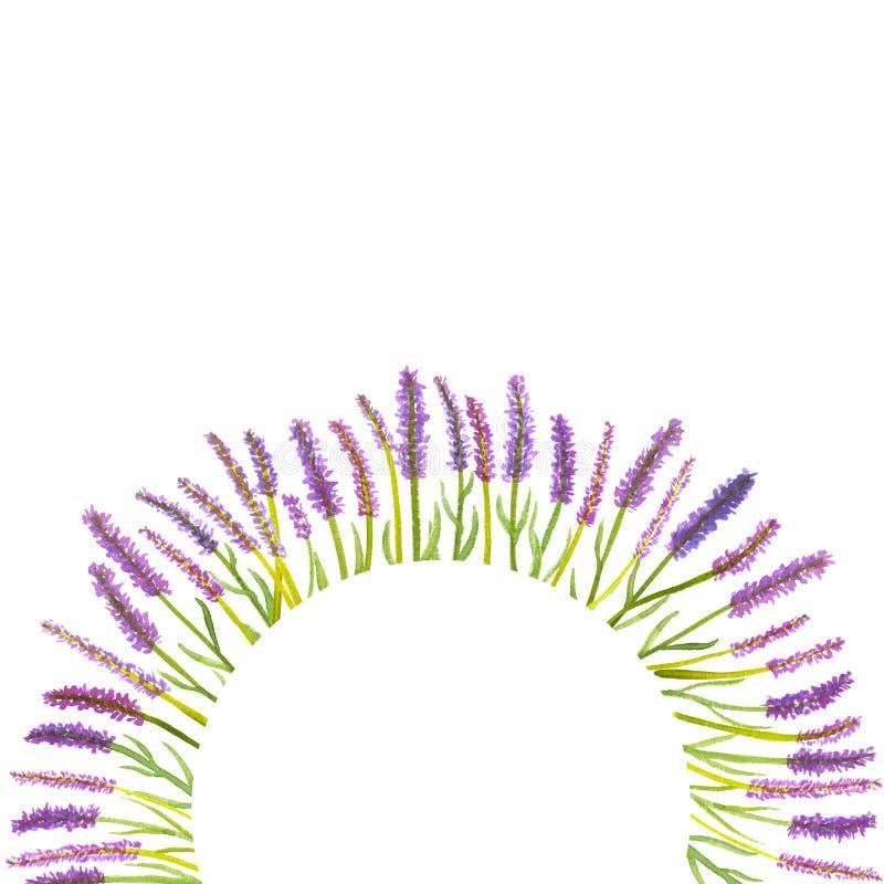水彩葡萄酒手拉的淡紫色花花圈 向量例证