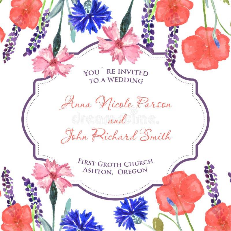 水彩被绘的婚姻的邀请 矢车菊、淡紫色、香豌豆花和鸦片花纹花样 向量例证