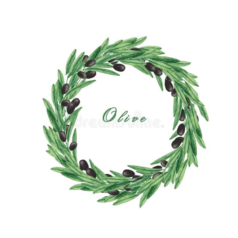 水彩设置用橄榄,橄榄树枝,一个瓶橄榄油 皇族释放例证