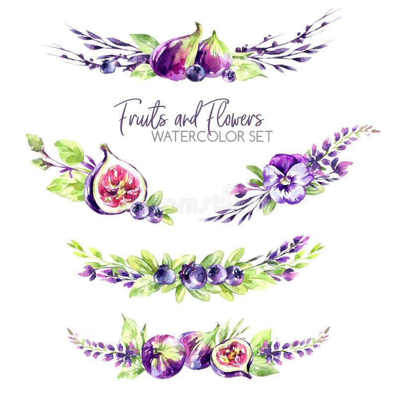水彩边界设置了与花、无花果和莓果 原始的手拉的例证在紫罗兰色树荫下 新夏天 库存例证