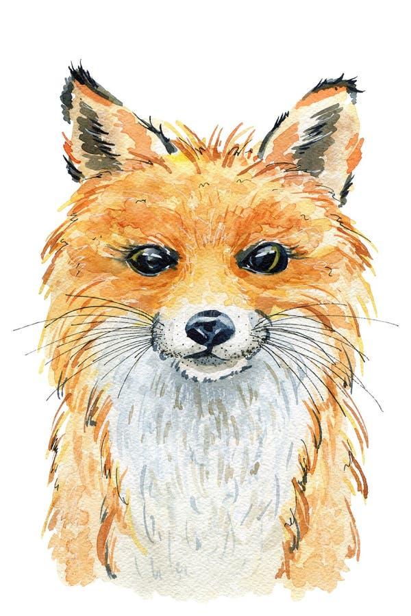 水彩逗人喜爱的狐狸 库存例证