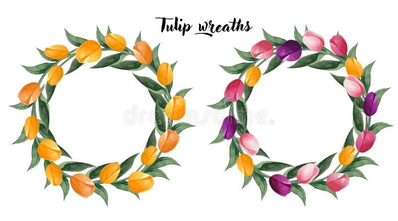 水彩郁金香花圈 五颜六色的郁金香缠绕和黄色在白色背景 植物的例证 向量例证