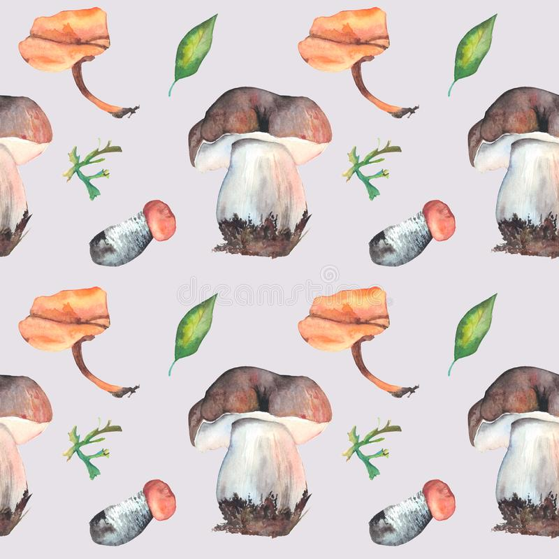 水彩采蘑菇无缝的样式 适用于打印在织品,盘,海报,绘画 皇族释放例证