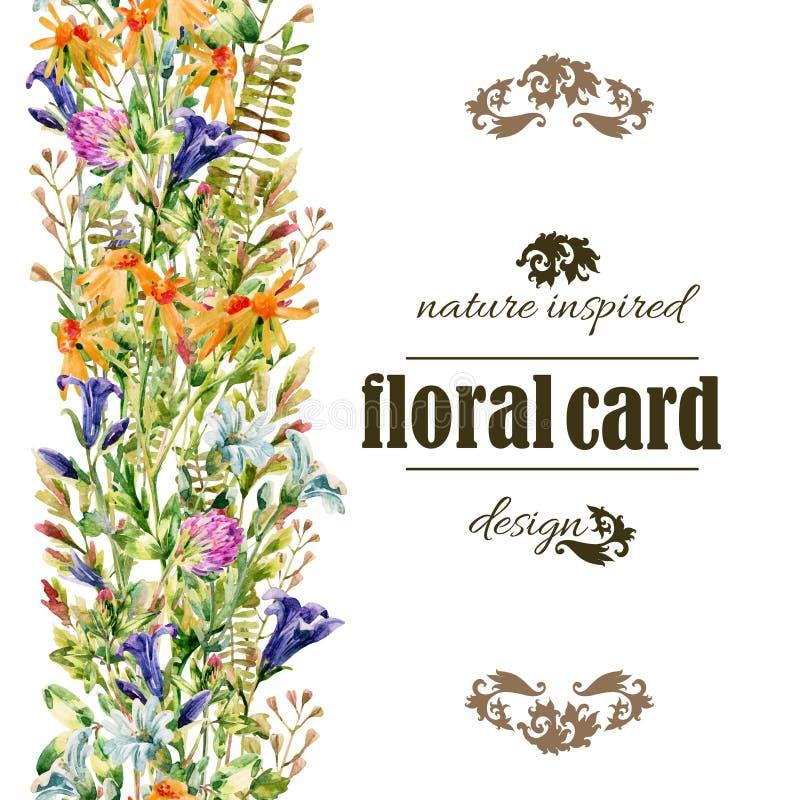 水彩野花卡片 向量例证