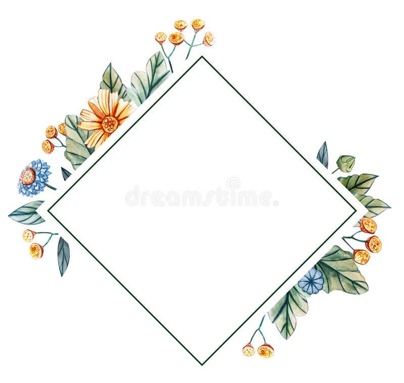 水彩野花花卉方形的框架  免版税库存图片