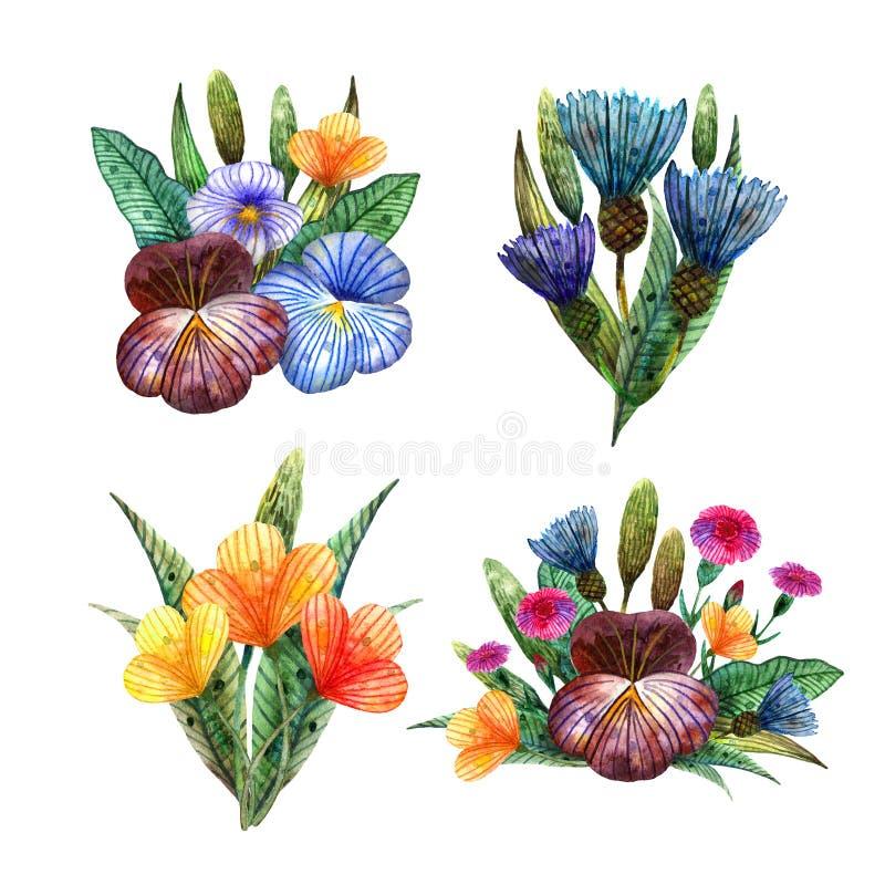 水彩野花 设置五颜六色的草甸花四逗人喜爱的夏天花束  皇族释放例证