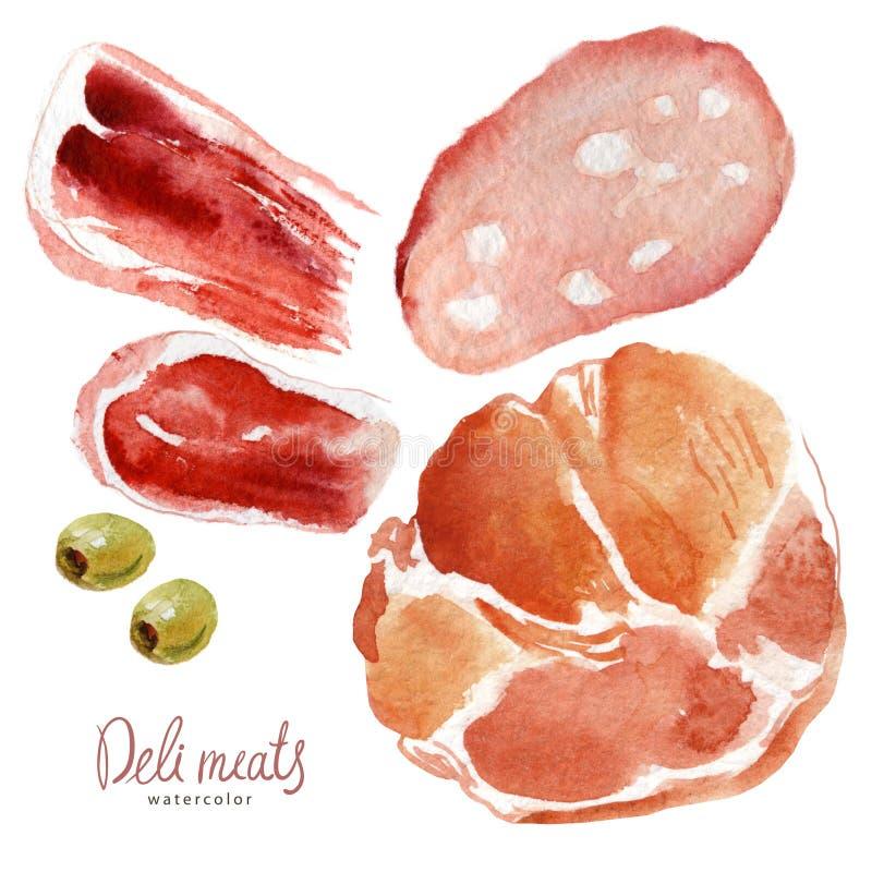 水彩食物 肉纤巧 向量例证
