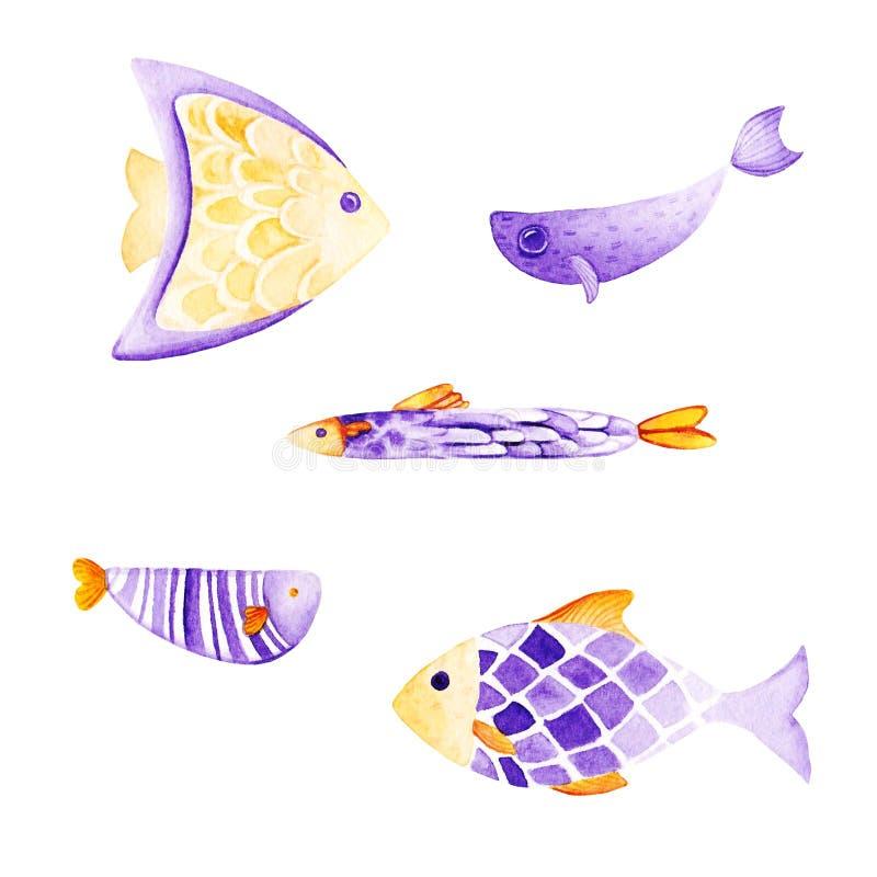 水彩鱼集合 紫外和金子颜色 为 库存例证