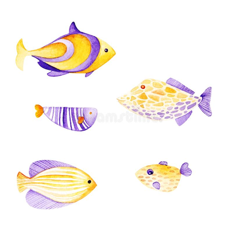 水彩鱼集合 紫外和金子颜色 皇族释放例证