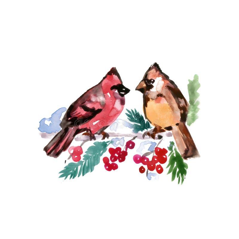 水彩鸟 向量例证