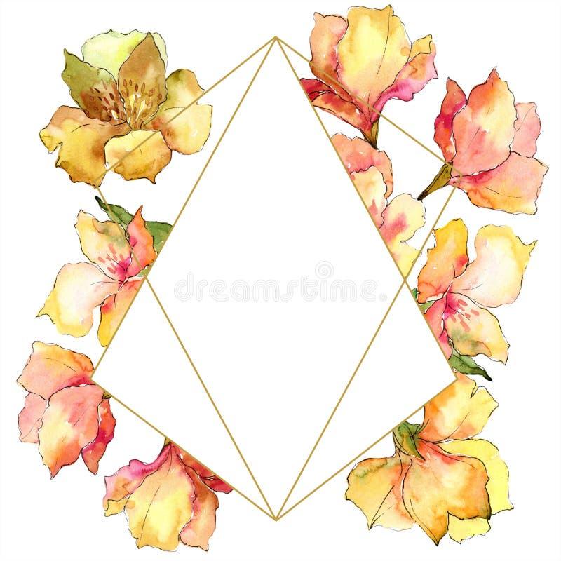 水彩黄色和橙色德国锥脚形酒杯花 花卉植物的花 框架边界装饰品正方形 向量例证