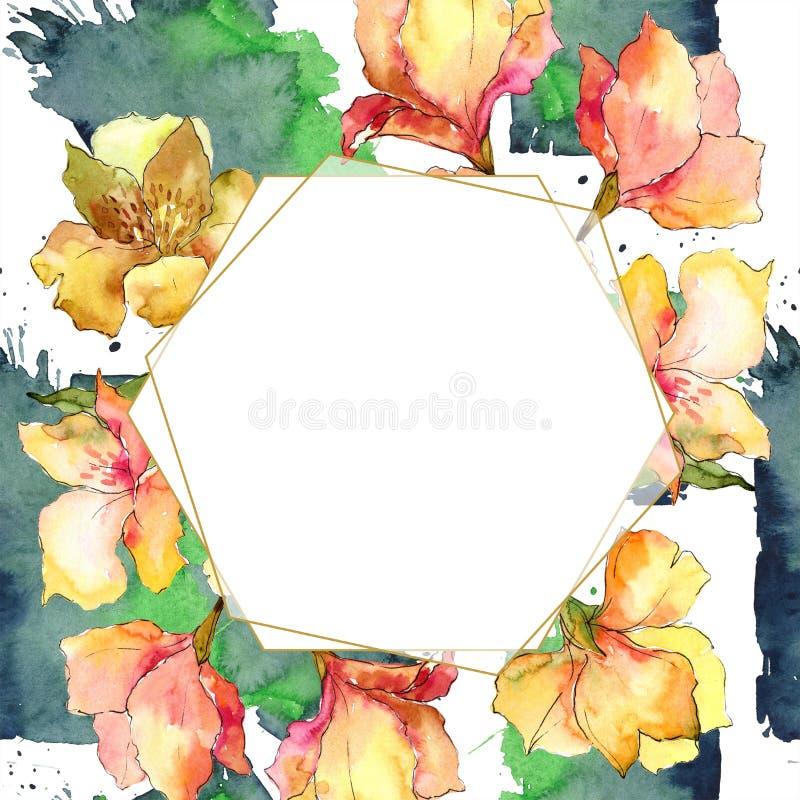 水彩黄色和橙色德国锥脚形酒杯花 花卉植物的花 框架边界装饰品正方形 皇族释放例证
