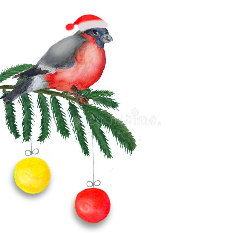 水彩 圣诞节构成做了鸟在与球的云杉的分支 库存例证