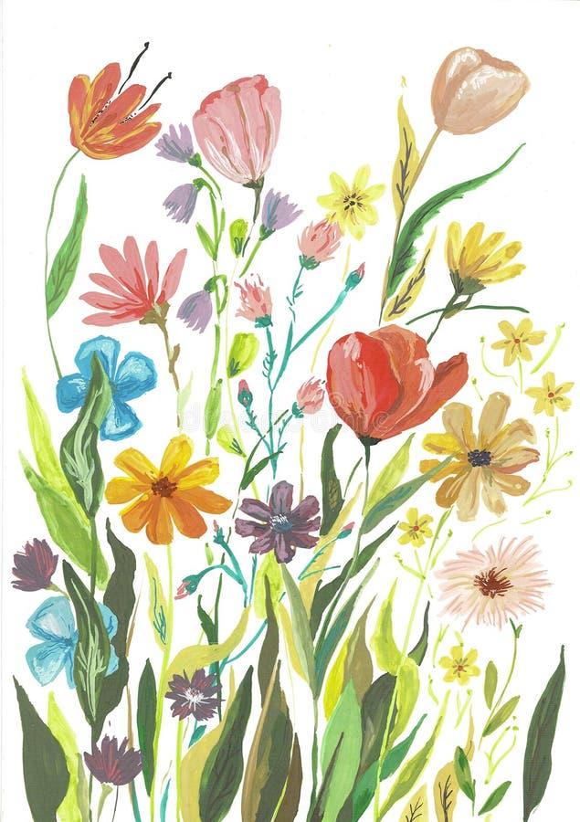 水彩Boho伯根地红色洋红色白色桃红色百花香花和羽毛隔绝了 库存例证