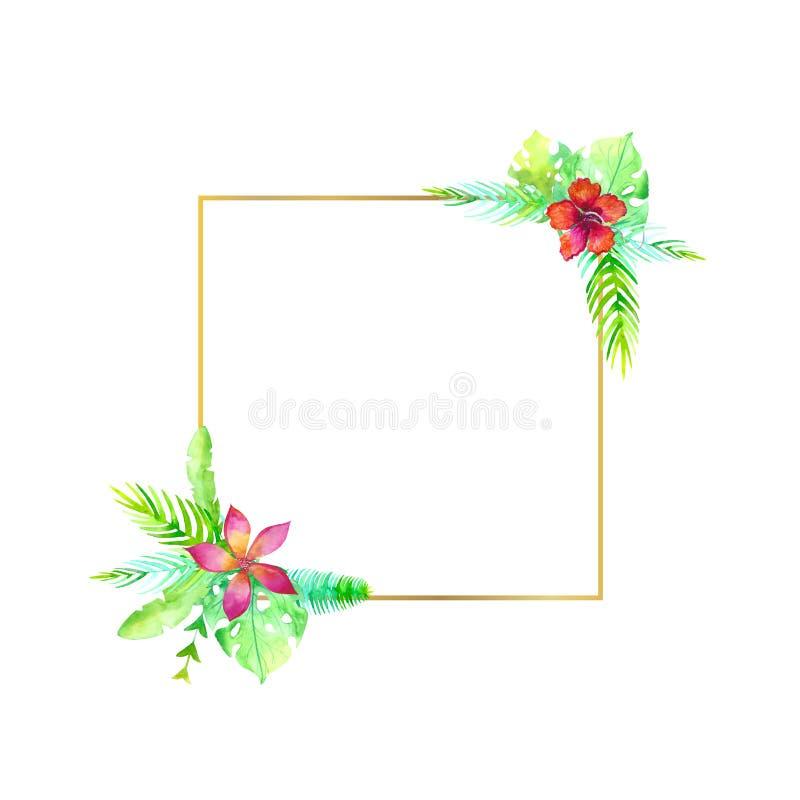 水彩ftropic婚礼正方形框架 手画异乎寻常的在白色背景隔绝的花和叶子 绿色密林 库存例证