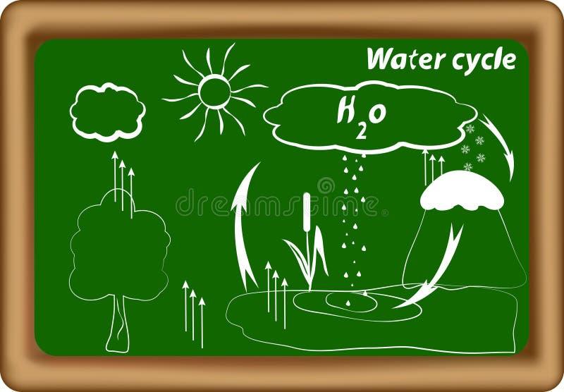 水循环。 水文学循环。 H2O循环 向量例证