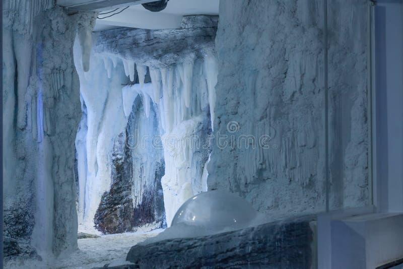 水族馆冻结的区域,冰冷的风景,您能观看pengu 免版税图库摄影